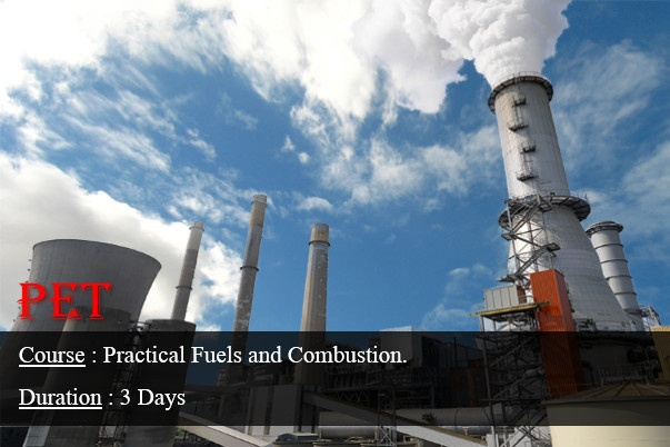Fuels and Combustion; Theory and Practices (GE07)